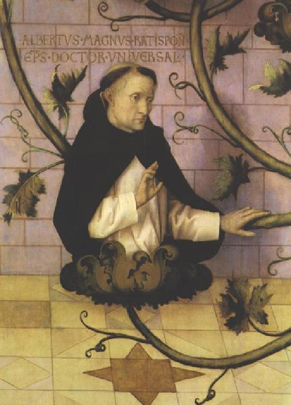 Albertus Magnus auf einem Ausschnitt aus dem GemäldedesHochaltarsdes ehemaligenFrankfurter Dominikanerklosters, rechter Flügel, Hans Holbein der Ältere (um 1465-1524)